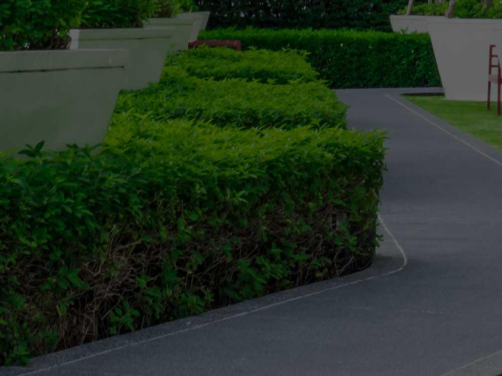 Boerne Commercial Landscaping