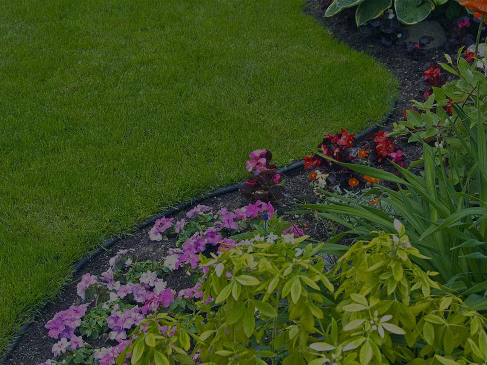 Boerne Garden Design