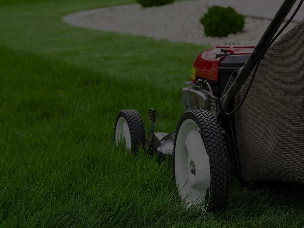 Boerne Lawn Mowing
