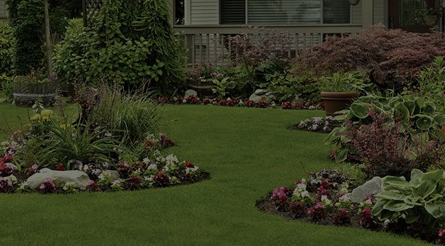 Home Boerne Commercial Property Maintenance Landscaping And Lawn Care