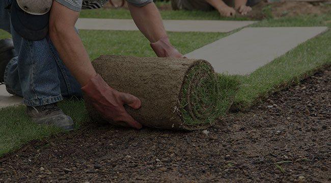 Boerne Lawn Care